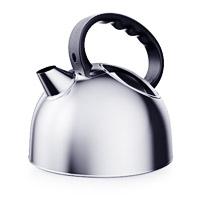Chainikus-2 kettle